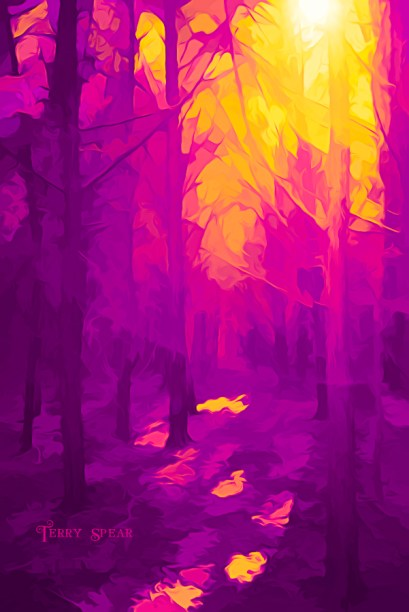 sun shining through the forest 900 purple and yellow woods 202