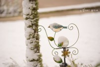 bird ornament 900 Snow in Spring 6070