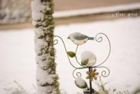bird ornament 900 Snow in Spring 6070
