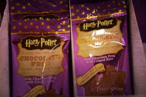Harry Potter chocolate frog 026