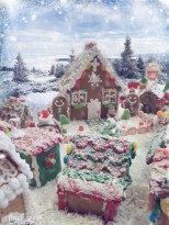 little gingerbread house with a doghouse1
