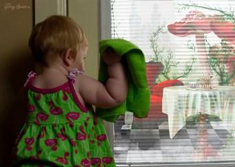 baby flamingo washing window--Alice 1000 068