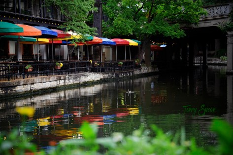 Colorful Umbrellas relfected in the river Riverwalk San Antonio 1000 183
