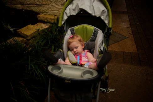 Sound asleep baby 1000 Riverwalk San Antonio 138