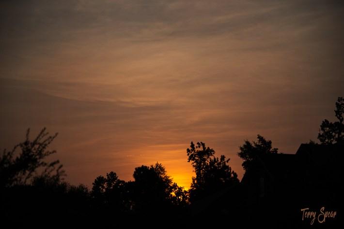 sunrise 1000 004