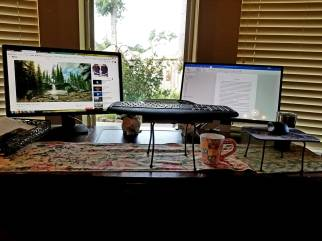 writing and exercising at desk