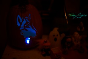 wolf pumpkin 1000 003