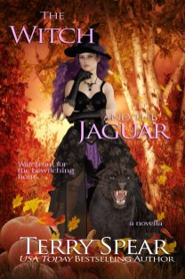 The-Witch-and-the-Jaguar-Nook