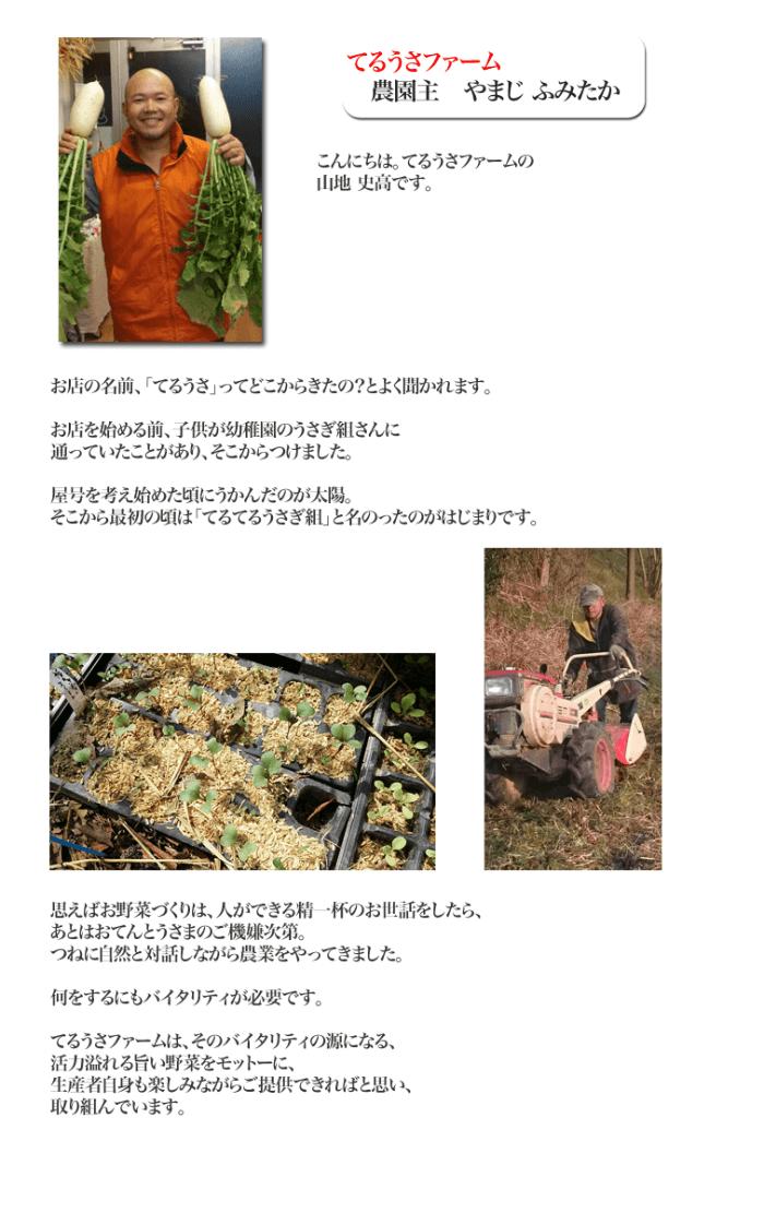 20160310teru-usa-profile-fumitaka