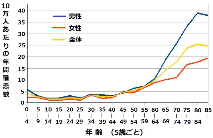 2005年国立がん研究センターのデータによる日本の年齢別性別白血病罹患率2005