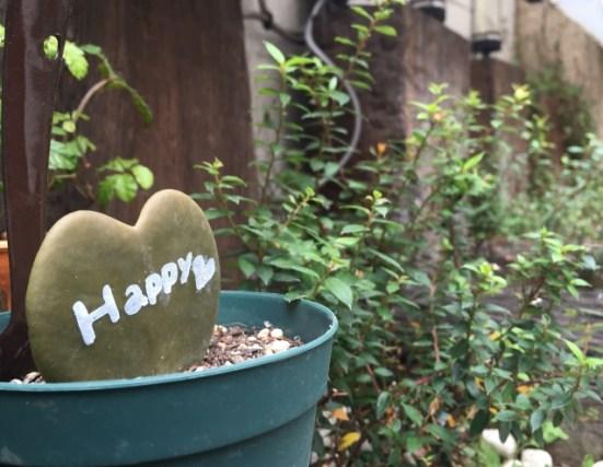 happyのサボテン