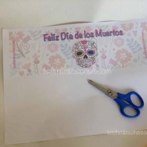 Riciclo Contenitore CD - Dia de Muertos05
