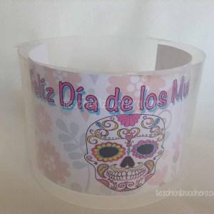 Riciclo Contenitore CD - Dia de Muertos07