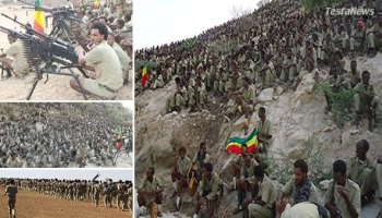 Change is finally coming to Ethiopia. The minorty regime of TPLF will soon to be crushed by the combined weight of the United Ethiopian Liberation Forces.