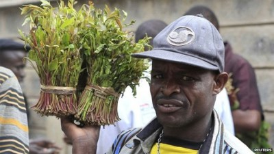 Khat an important cash crop for the corrupt authorities in Ethiopia.