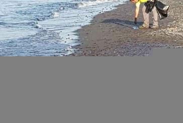 11 ton kandil deti derdhen në plazh, probleme me turistët