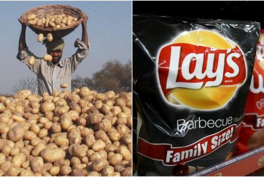 """Pepsi padit fermerët që rrisin """"pataten e Lays-ave"""""""