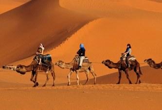 Në gjurmët e Profetit: gati rikrijimi i rrugës me deve nga Meka në Medinë