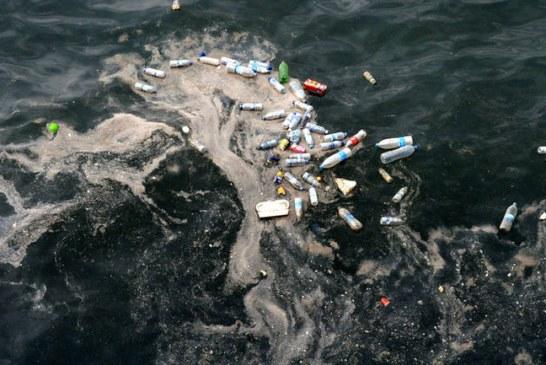 KONSTATIMI/ Ekspertët: Adriatiku, ndër detet më të ndotura në Evropë (dhe kroatët që ankohen për shqiptarët)