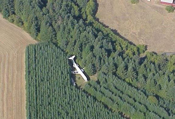 Cili është fati i këtij Boeing-u 727 të fshehur në pyll?