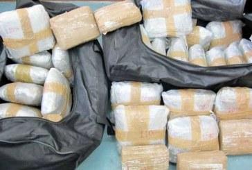 Kokainë në mish pule, sekuestroja e pazakontë në Kosovë