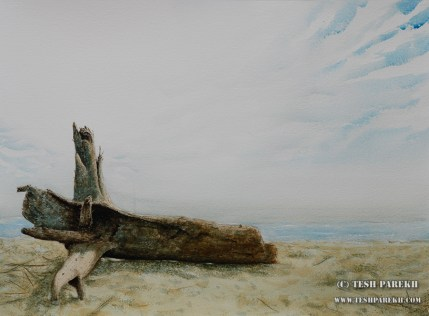 Driftwood. 21x29. Drybrush watercolor on paper. Artist - Tesh Parekh