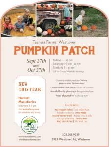 Pumpkin Patch 2019