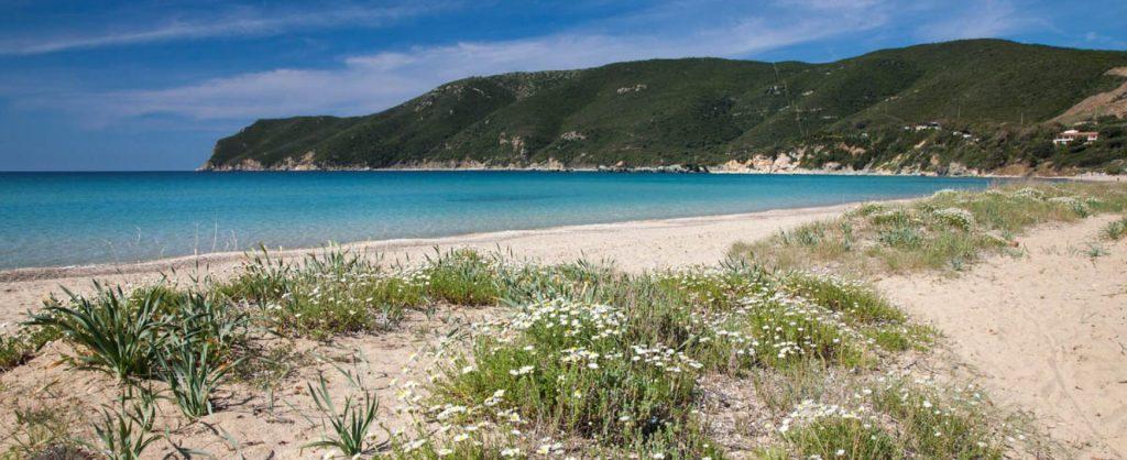 Ville Elba Spiaggia di Lacona
