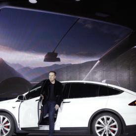 Tesla Motors investors turn bearish as stock slumps