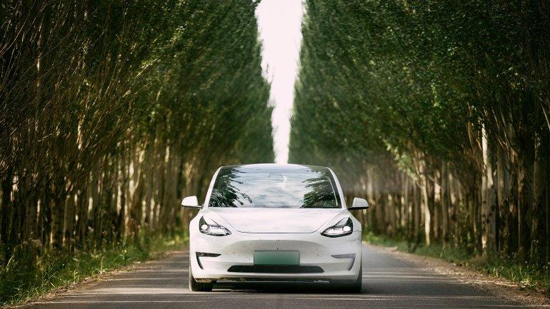 Илон Маск объясняет стратегию Tesla LFP Battery для американской модели 3 SR +