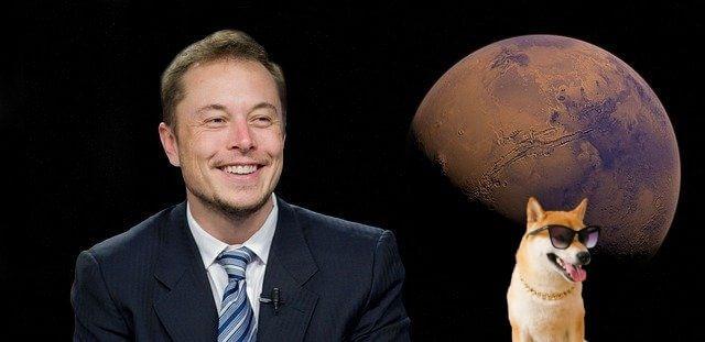 Elon Musk ja Shiba Inu koira
