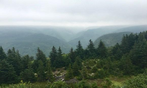 Cabot Trail - in fog
