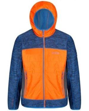 Regatta  Harra II Hybrid Wind Resistant Softshell Jacket Blue  men's Coat in Blue