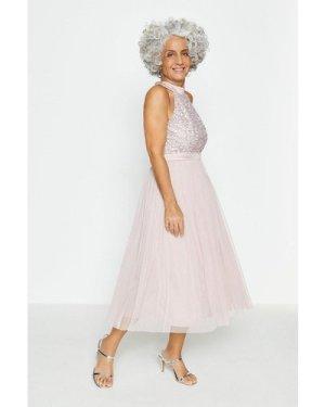 Coast Sequin Bodice Halter Midi Dress -, Pink