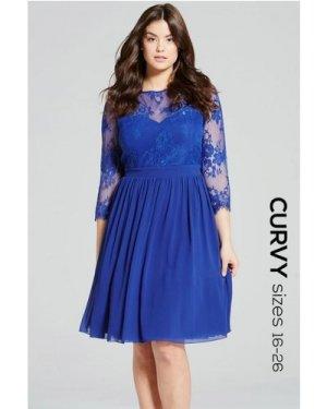 Little Mistress Curvy Cobalt Lace Sleeve Dress size: 24 UK, colour: Co
