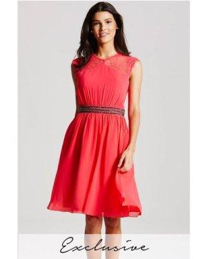 Little Mistress Coral Lace Sleeve Dress  size: 12 UK, colour: Coral