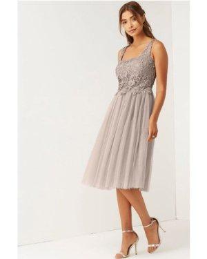 Little Mistress Mink Lace and Mesh Prom Dress size: 8 UK, colour: Mink