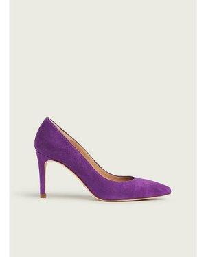 Floret Purple Suede Courts, Mulberry