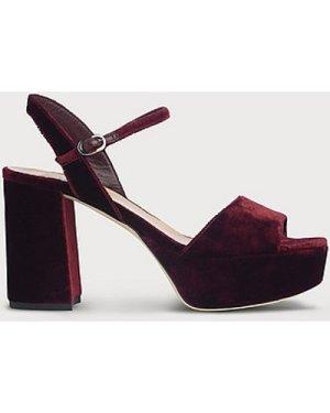 Keriss Wine Velvet Sandals, Black Raspberry