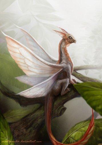 Little Dragon by Marta Emilia