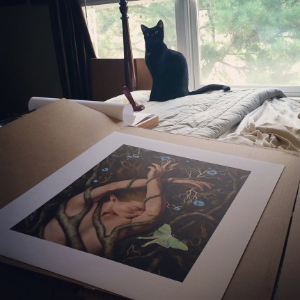 Drusilla inspecting canvas prints