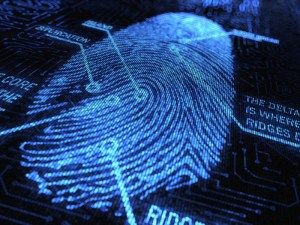 5 Magical Strategies to Protect Yourself from Identity Theft by Tess Whitehurst