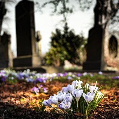 How Growing up in a Funeral Chapel Family Made Us Happy People