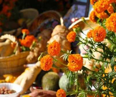 Samhain Celebration Ritual Ideas