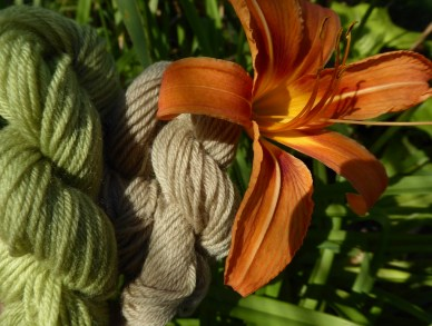 a green and a fawn colour miniskein pictured next to an orange day lily