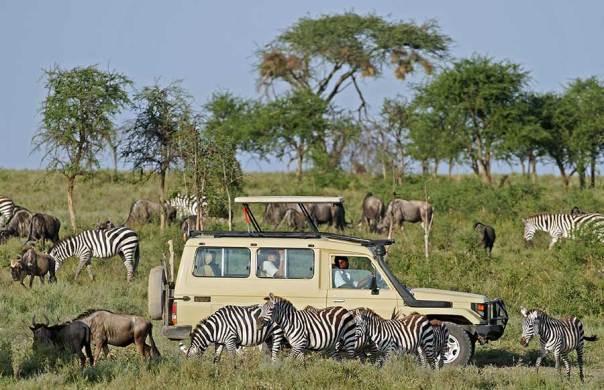 Fotoreise_Fotosafari_Fotoworkshop_Benny-Rebel_Afrika_Tansania_089_Afrika
