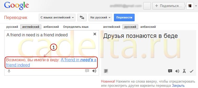 az opció szó fordítása