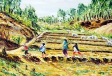la traversée des rizières asséchées ( Birmanie )