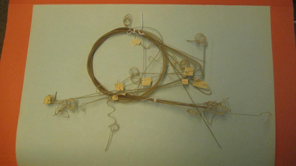 oldest lute oud strings.JPG