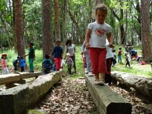 Forêt-maternelle-8-600x450